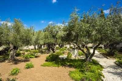 le Jardin de Getsémani